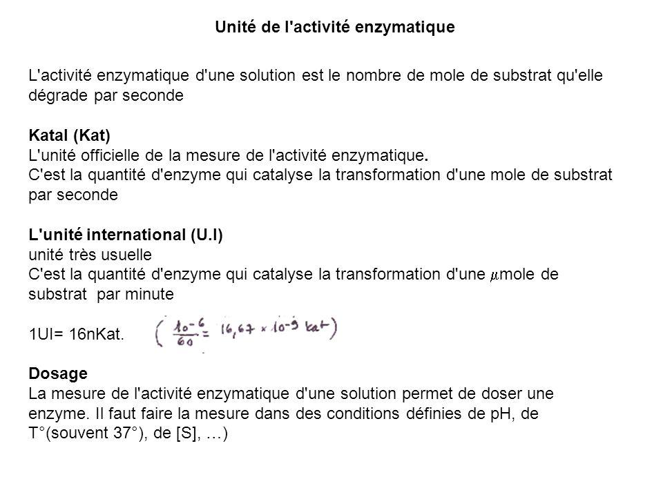 Unité de l'activité enzymatique L'activité enzymatique d'une solution est le nombre de mole de substrat qu'elle dégrade par seconde Katal (Kat) L'unit