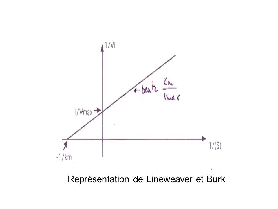 Représentation de Lineweaver et Burk