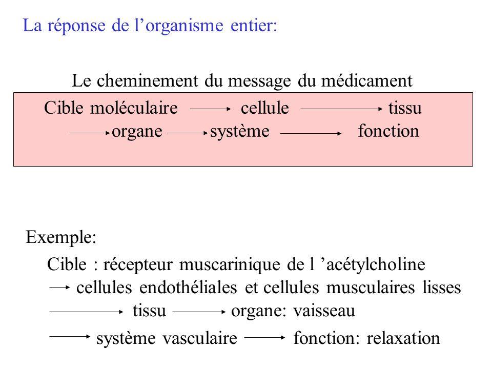 La réponse de lorganisme entier: Le cheminement du message du médicament Cible moléculairecellule tissu organesystème fonction Exemple: Cible : récept