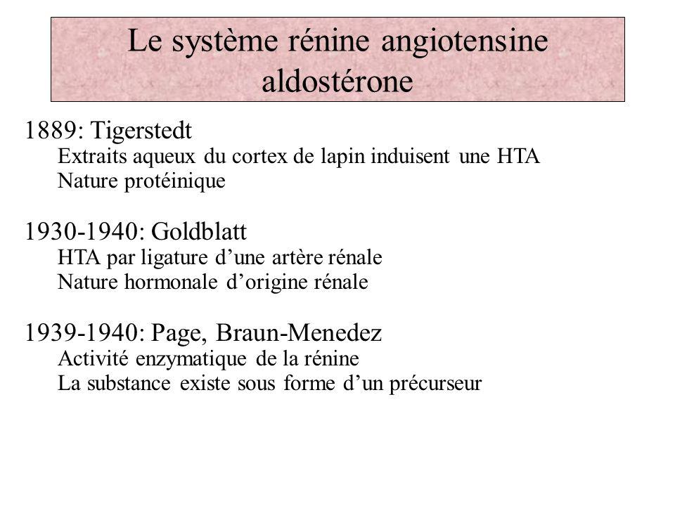 Le système rénine angiotensine aldostérone 1889: Tigerstedt Extraits aqueux du cortex de lapin induisent une HTA Nature protéinique 1930-1940: Goldbla
