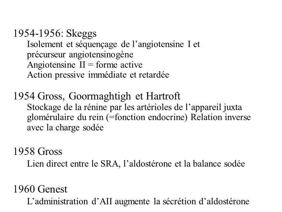 1954-1956: Skeggs Isolement et séquençage de langiotensine I et précurseur angiotensinogène Angiotensine II = forme active Action pressive immédiate e