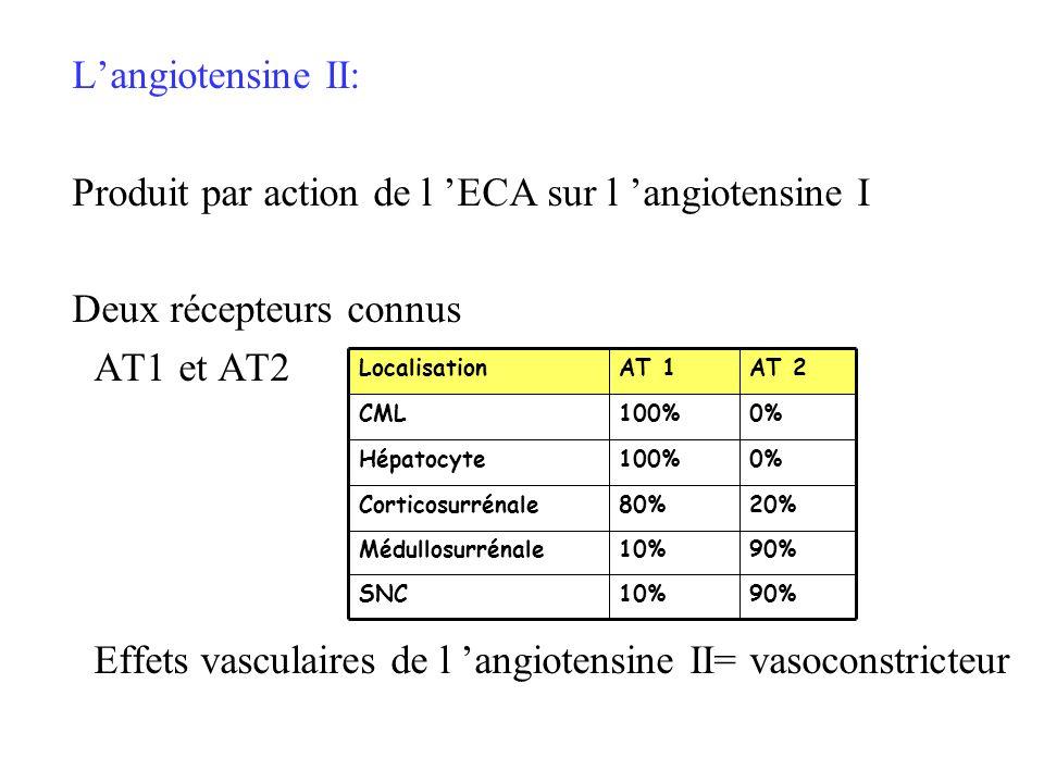Langiotensine II: Produit par action de l ECA sur l angiotensine I Deux récepteurs connus AT1 et AT2 Effets vasculaires de l angiotensine II= vasocons