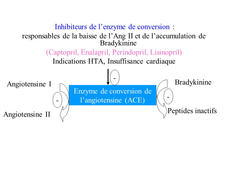 Inhibiteurs de lenzyme de conversion : responsables de la baisse de lAng II et de laccumulation de Bradykinine (Captopril, Enalapril, Perindopril, Lis