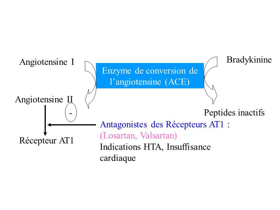 Angiotensine I Bradykinine Enzyme de conversion de langiotensine (ACE) Angiotensine II Peptides inactifs Récepteur AT1 Antagonistes des Récepteurs AT1
