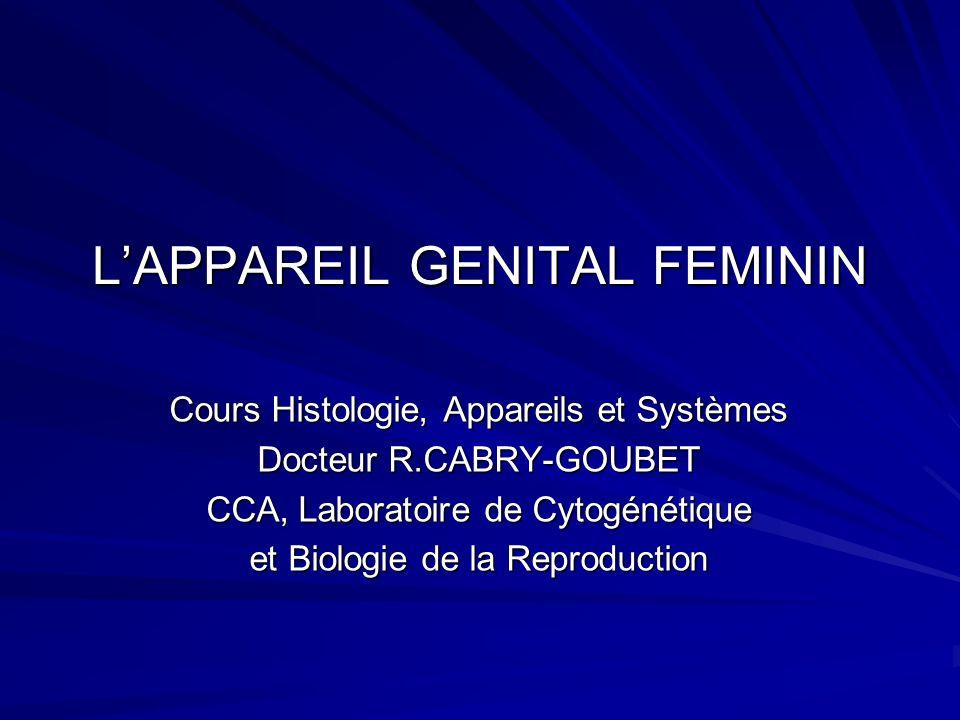 LAPPAREIL GENITAL FEMININ PLAN 1- Les ovaires 2- Les trompes 3- Lutérus 4- Le vagin 5- La glande mammaire