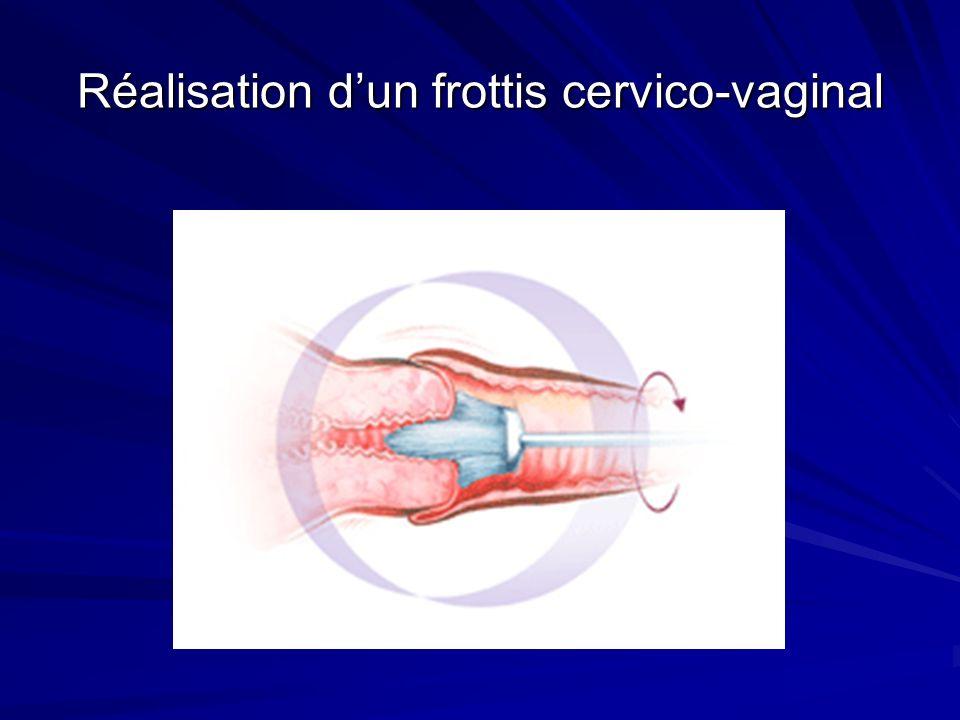 CINQUIEME PARTIE LA GLANDE MAMMAIRE 1.Rappels embryologiques 2.