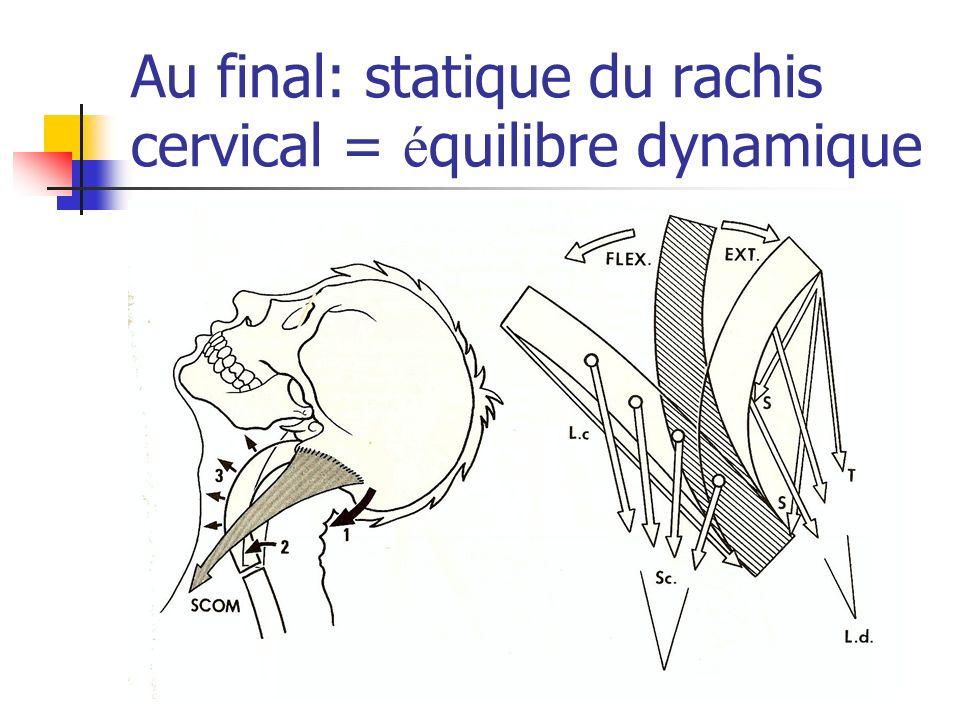 Au final: statique du rachis cervical = é quilibre dynamique