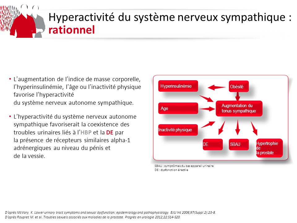 Daprès McVary. K. Lower urinary tract symptoms and sexual dysfunction: epidemiology and pathophysiology. BJU Int 2006;97(Suppl.2):23-8. Daprès Roupret