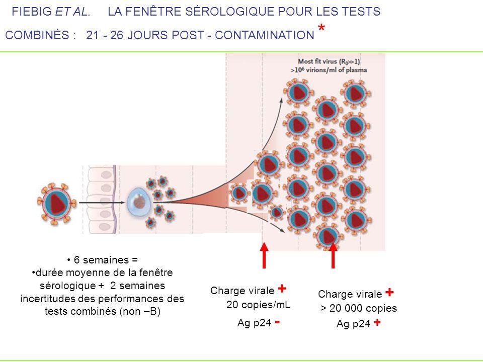 Charge virale + 20 copies/mL Ag p24 - Charge virale + > 20 000 copies Ag p24 + FIEBIG ET AL. LA FENÊTRE SÉROLOGIQUE POUR LES TESTS COMBINÉS : 21 - 26