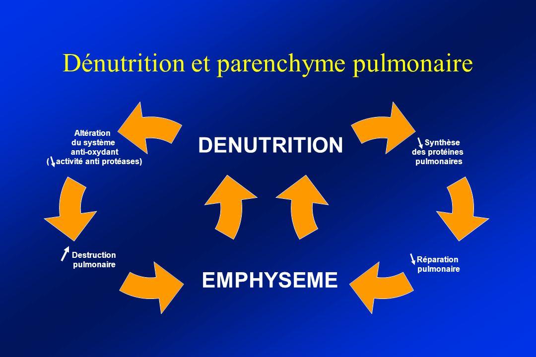 Dénutrition et parenchyme pulmonaire Synthèse des protéines pulmonaires Réparation pulmonaire Altération du système anti-oxydant ( activité anti protéases) Destruction pulmonaire DENUTRITION EMPHYSEME