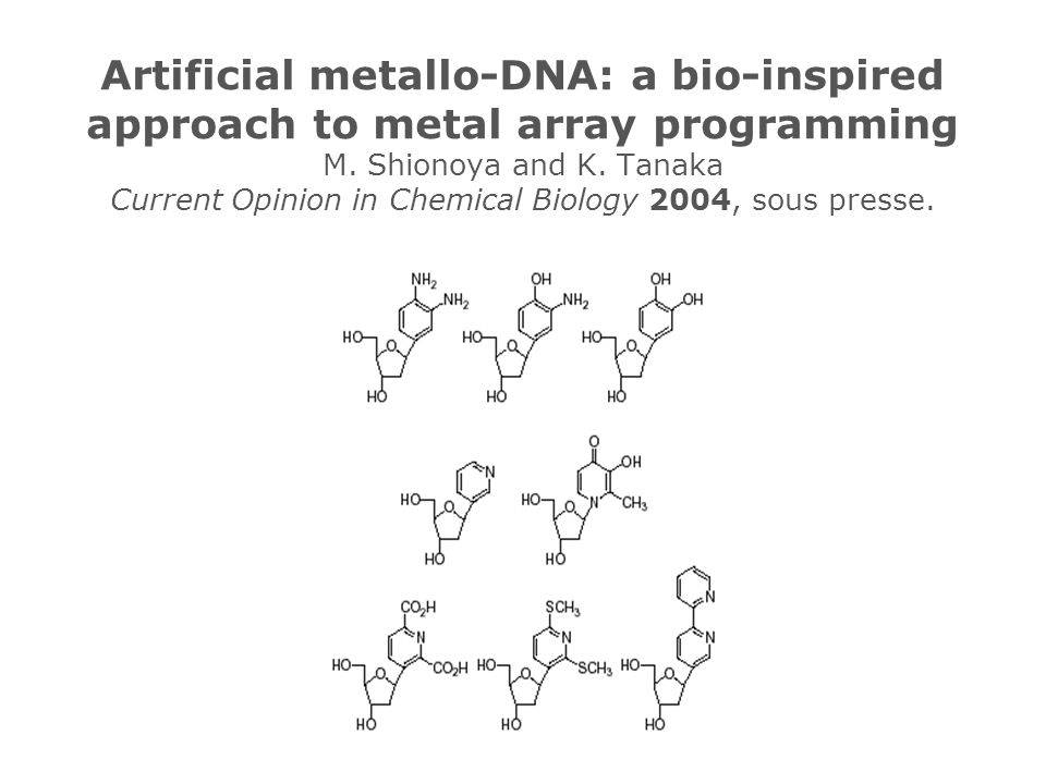 Artificial metallo-DNA: a bio-inspired approach to metal array programming M.