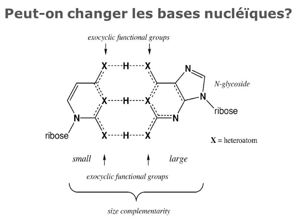 Peut-on changer les bases nucléïques?