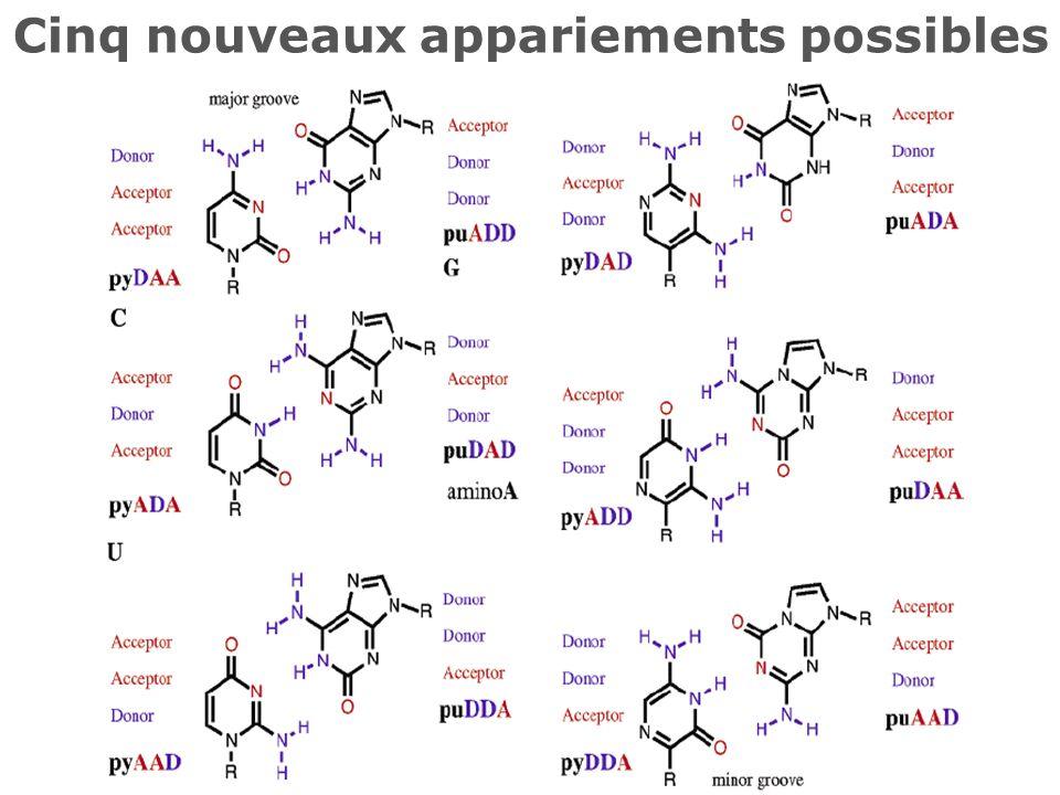 Pyrimidine > pyridine ~ pyrazine
