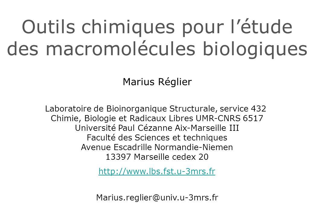Outils chimiques pour létude des macromolécules biologiques Marius Réglier Marius.reglier@univ.u-3mrs.fr Laboratoire de Bioinorganique Structurale, se