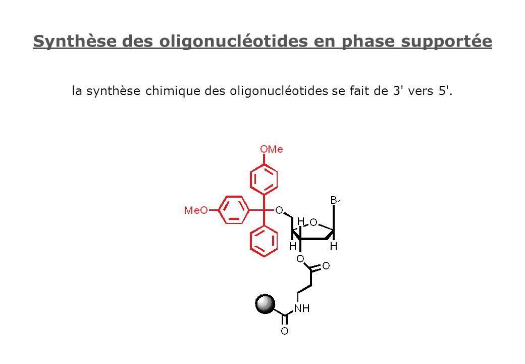 Synthèse des oligonucléotides en phase supportée la synthèse chimique des oligonucléotides se fait de 3' vers 5'.