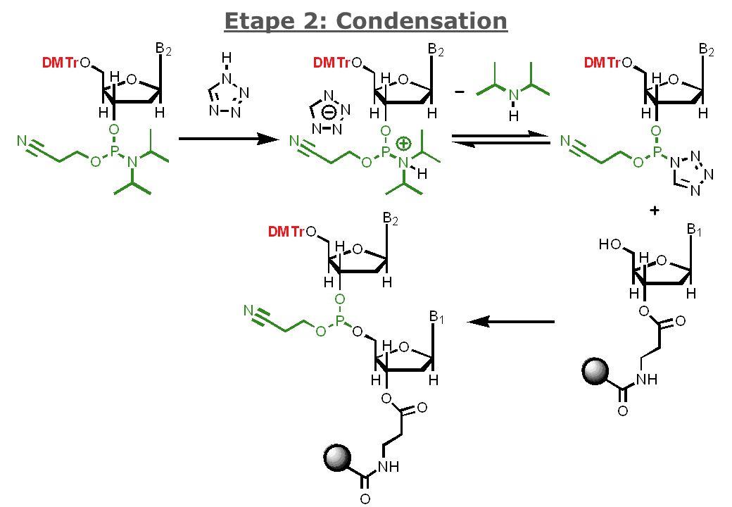 Etape 2: Condensation