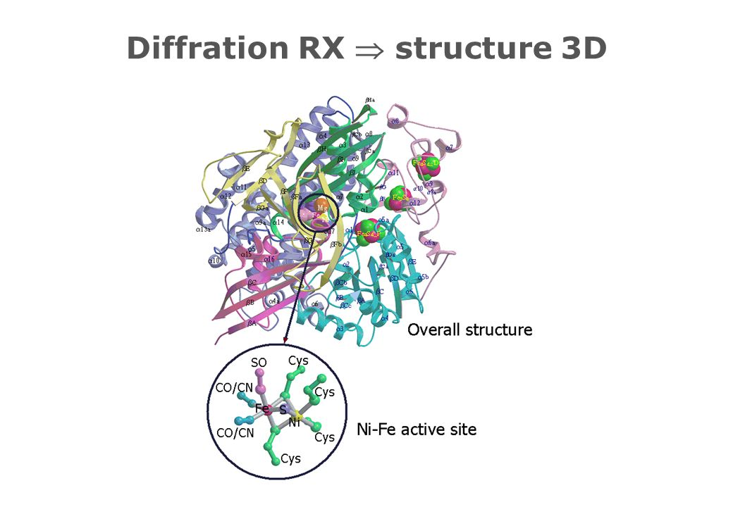 Diffration RX structure 3D