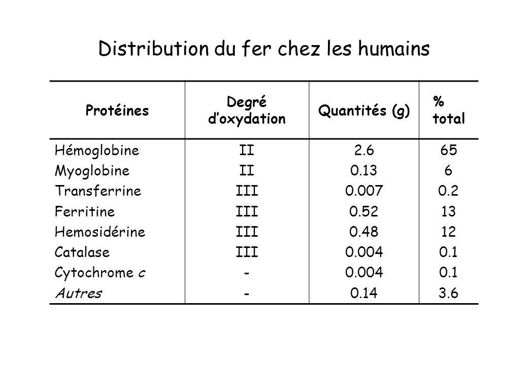 Distribution du fer chez les humains Protéines Degré doxydation Quantités (g) % total Hémoglobine Myoglobine Transferrine Ferritine Hemosidérine Catal