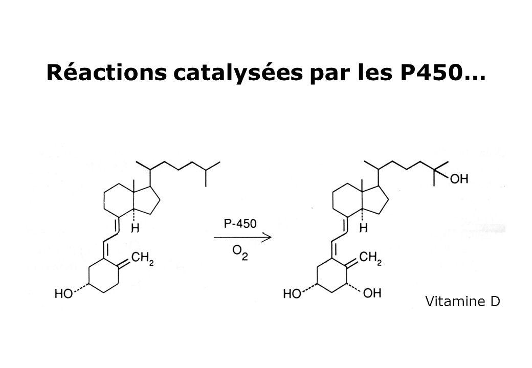 Réactions catalysées par les P450… Vitamine D