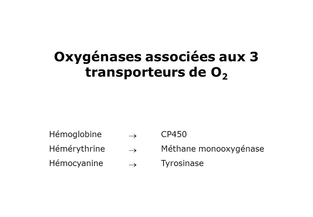 Oxygénases associées aux 3 transporteurs de O 2 Hémoglobine Hémérythrine Hémocyanine CP450 Méthane monooxygénase Tyrosinase