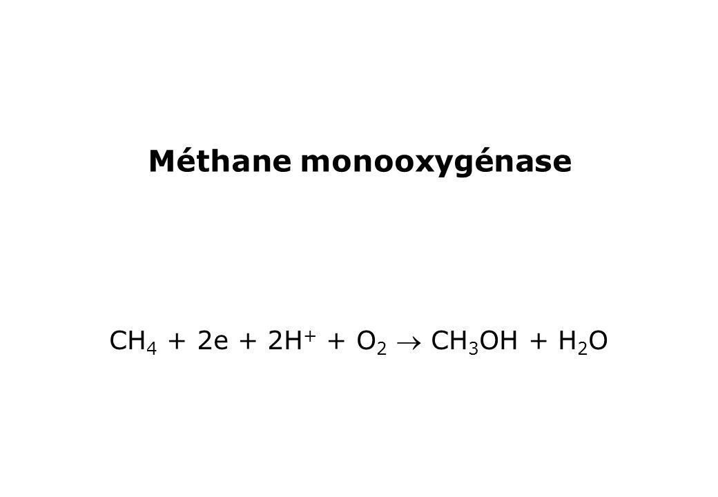 Méthane monooxygénase CH 4 + 2e + 2H + + O 2 CH 3 OH + H 2 O