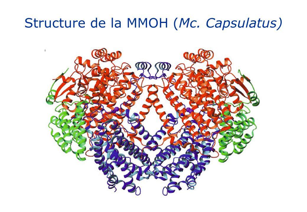 Structure de la MMOH (Mc. Capsulatus)