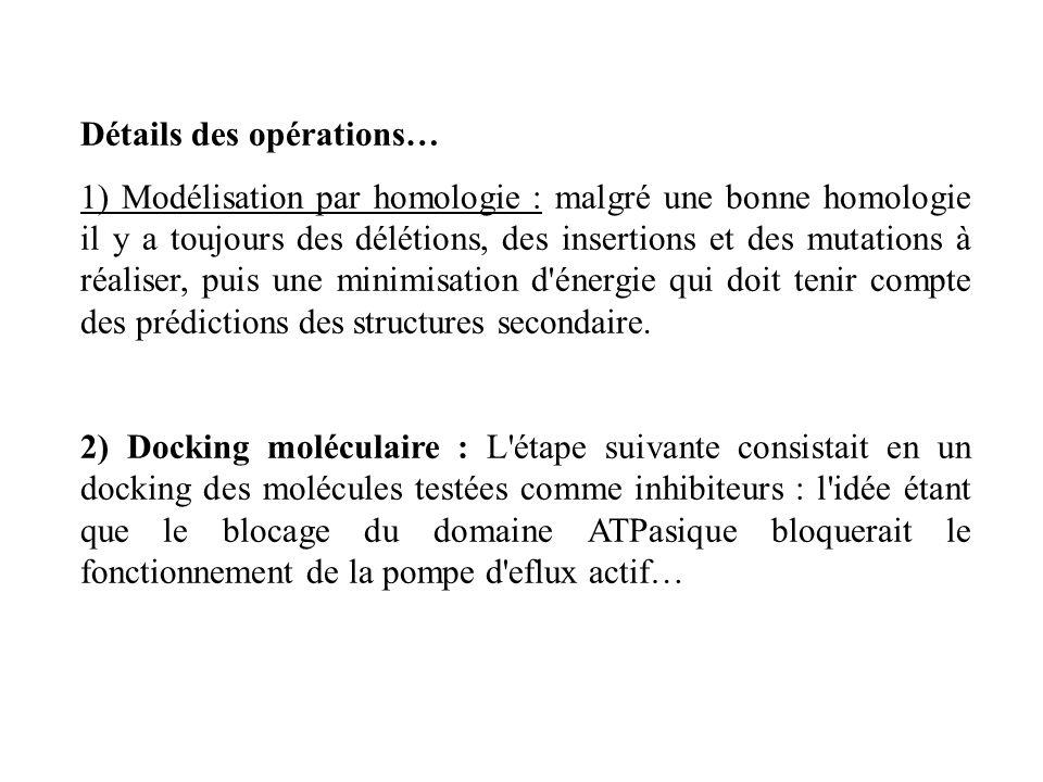Détails des opérations… 1) Modélisation par homologie : malgré une bonne homologie il y a toujours des délétions, des insertions et des mutations à ré