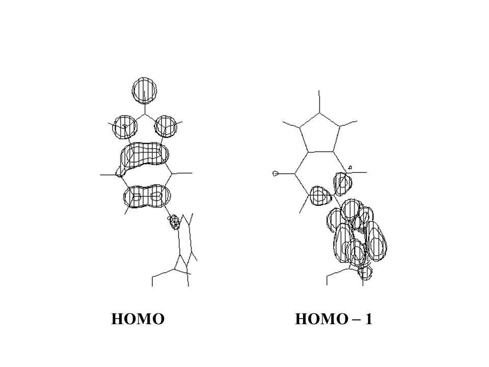 HOMO HOMO 1