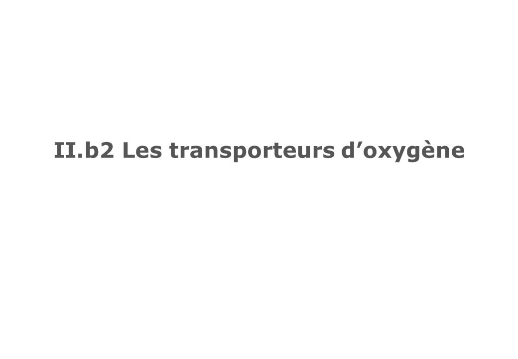 Les transporteurs doxygène Hémoglobine, Hb (vertébrés) Hémocyanine, Hc (mollusques et arthropodes) Hémérythrine, Hr (invertébrés)