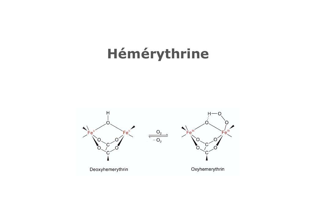 Hémérythrine