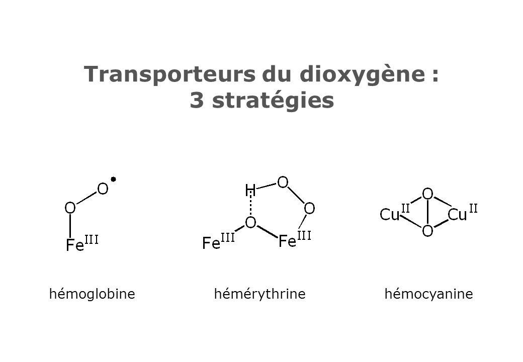 Transporteurs du dioxygène : 3 stratégies hémoglobinehémérythrinehémocyanine