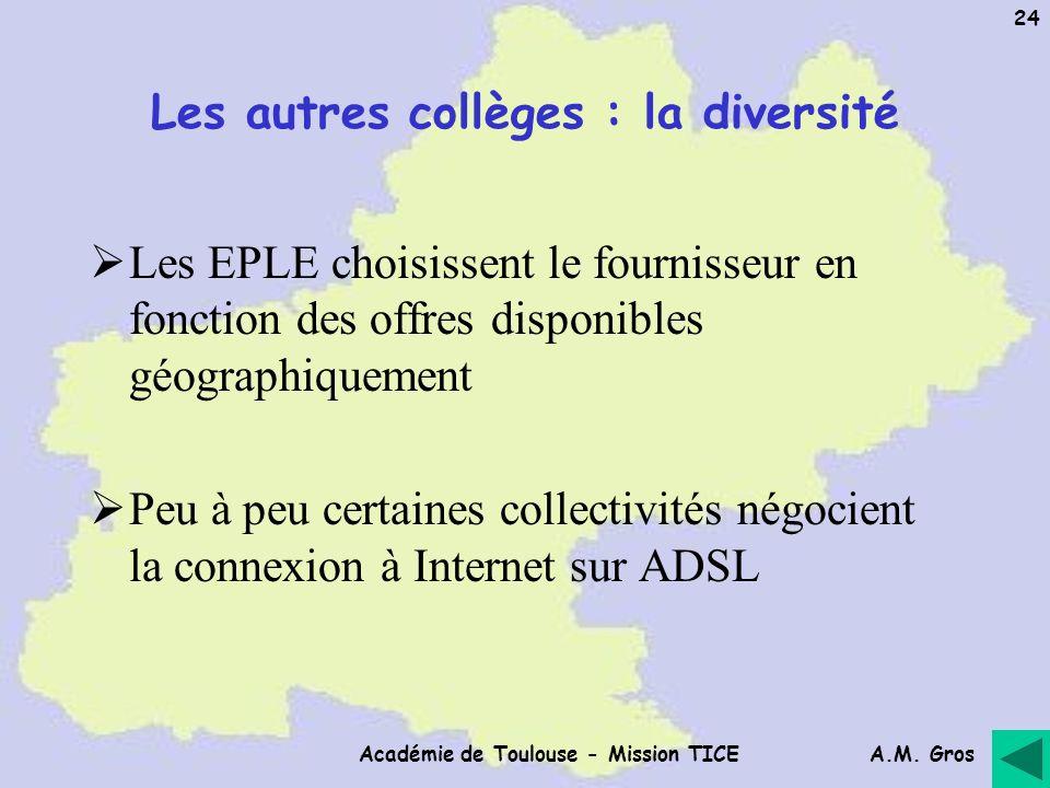 A.M. Gros Académie de Toulouse - Mission TICE 24 Les autres collèges : la diversité Les EPLE choisissent le fournisseur en fonction des offres disponi