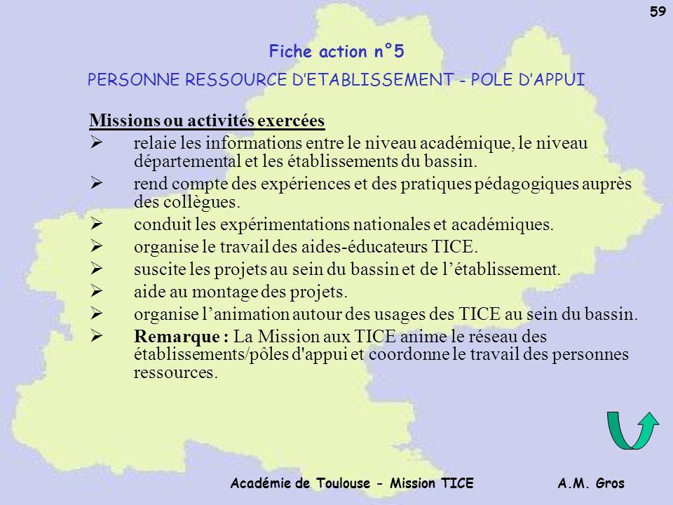 A.M. Gros Académie de Toulouse - Mission TICE 59 Fiche action n°5 PERSONNE RESSOURCE DETABLISSEMENT - POLE DAPPUI Missions ou activités exercées relai