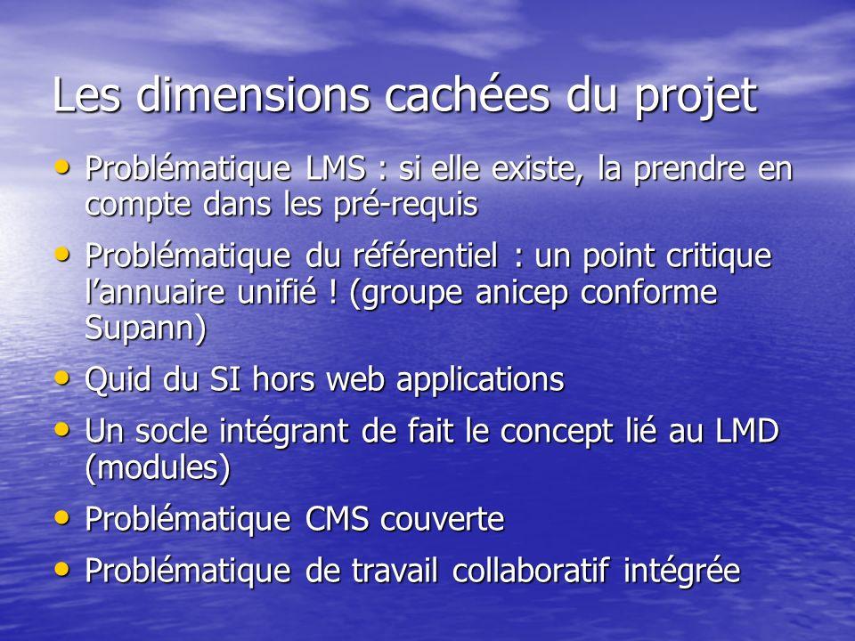 Les dimensions cachées du projet Problématique LMS : si elle existe, la prendre en compte dans les pré-requis Problématique LMS : si elle existe, la prendre en compte dans les pré-requis Problématique du référentiel : un point critique lannuaire unifié .