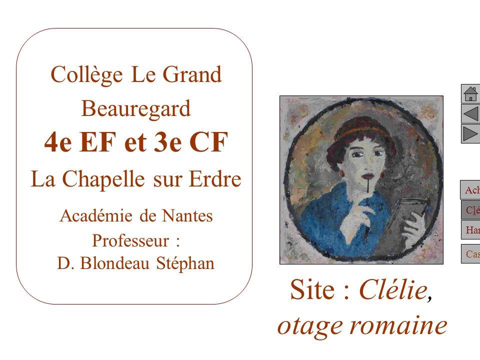 Achille Clélie Hannibal Casting Collège Le Grand Beauregard 4e EF et 3e CF La Chapelle sur Erdre Académie de Nantes Professeur : D.