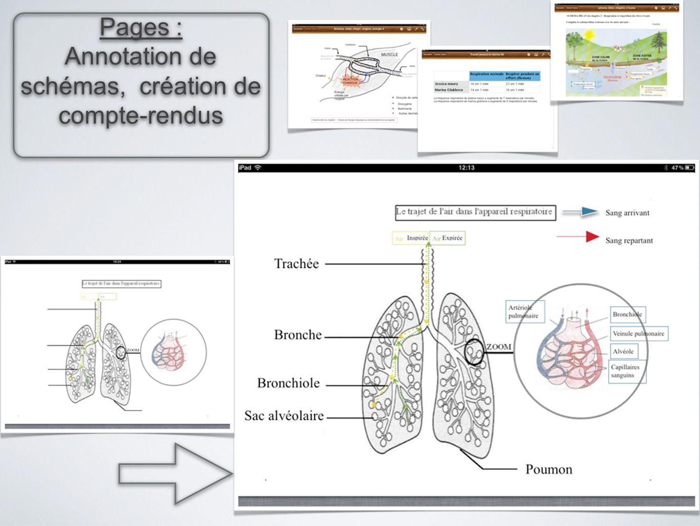 Pages : Annotation de schémas, création de compte-rendus Pages : Annotation de schémas, création de compte-rendus