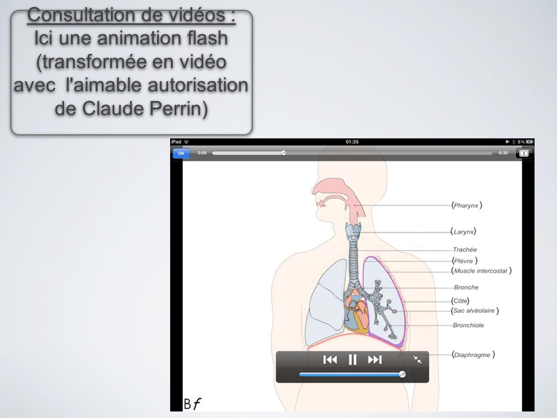 Consultation de vidéos : Ici une animation flash (transformée en vidéo avec l'aimable autorisation de Claude Perrin) Consultation de vidéos : Ici une