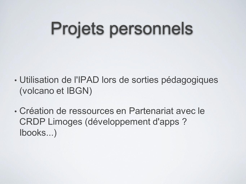 Projets personnels Utilisation de l'IPAD lors de sorties pédagogiques (volcano et IBGN) Création de ressources en Partenariat avec le CRDP Limoges (dé