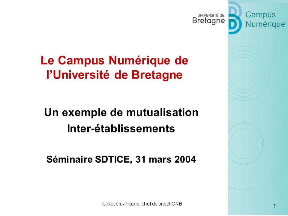 Campus Numérique 1 C.Nocéra-Picand, chef de projet CNB Un exemple de mutualisation Inter-établissements Séminaire SDTICE, 31 mars 2004 Le Campus Numérique de lUniversité de Bretagne
