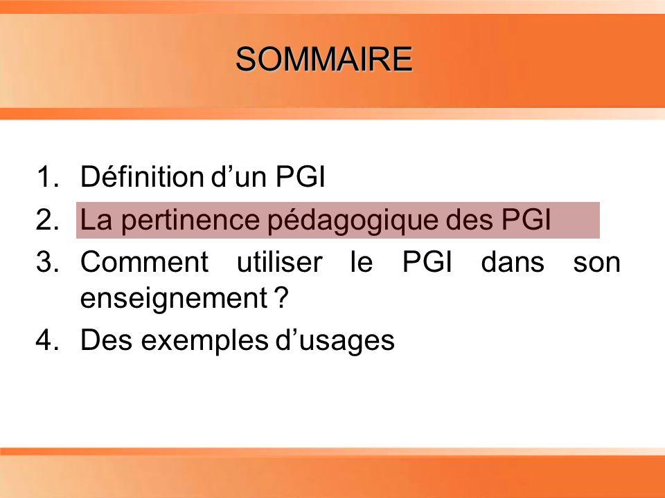 Planning 1.Définition dun PGI 2.La pertinence pédagogique des PGI 3.Comment utiliser le PGI dans son enseignement ? 4.Des exemples dusages SOMMAIRE