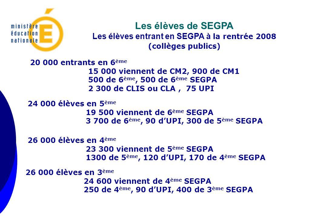 Sorties vers le LP Enquête DGESCO 1999 2000 2001 2002 2003 2005 2006 Donn é es DEPP 2008 31,74% 34,9% 38,34% 41,1% 43% 51,46% 47,91% 60% Sorties vers le CFA Enquête DGESCO 1999 2000 2001 2002 2003 2005 2006 Donn é es DEPP 2008 23,16% 24,9% 25,09% 23,5% 21% 21,42% 19,50 % 14% Poursuites dans les EGPA (hors redoublement) 1999 2000 2001 2002 2003 2005 2006 18,3% 16,05% 14,69% 13,4% 10,7% 5,95% 10,38% Laccès à une formation diplômante de niveau V Prises en charge par la MGI 1999 2000 2001 2002 2003 2005 2006 8,36% 7,1% 5,47% 4,87% 6% 5,52% 5,36% Autres solutions (Emploi, medico- éducatif, formation s intégrées, …) 1999 2000 2001 2002 2003 2005 2006 13,7% 11,9% 10,69% 11,17% 9,3% 9,6% 10,95% Situation inconnue 1999 2000 2001 2002 2003 2005 2006 4,74% 5,23% 5,72% 5,9% 6,3% 6,05% 5,90% Les données et les systèmes dinformation actuels ne permettent pas dobtenir la réussite au CAP pour nos élèves sortant de SEGPA