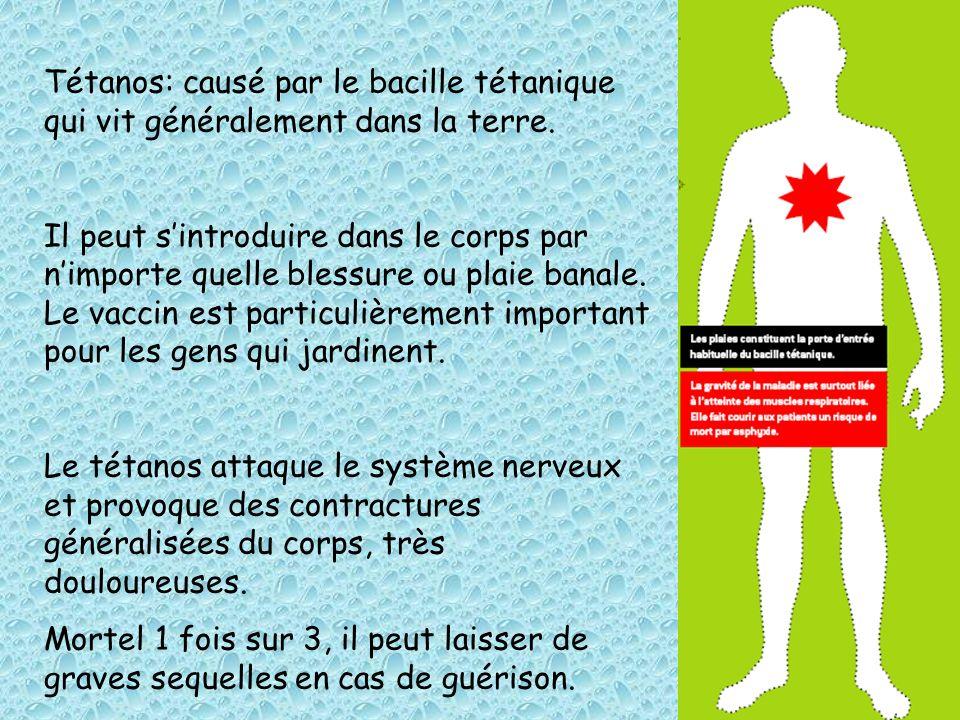 Tétanos: causé par le bacille tétanique qui vit généralement dans la terre. Il peut sintroduire dans le corps par nimporte quelle blessure ou plaie ba