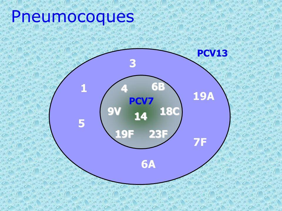 3 6A 19A 7F 1 5 4 14 9V18C 23F19F 6B PCV7 Pneumocoques PCV13
