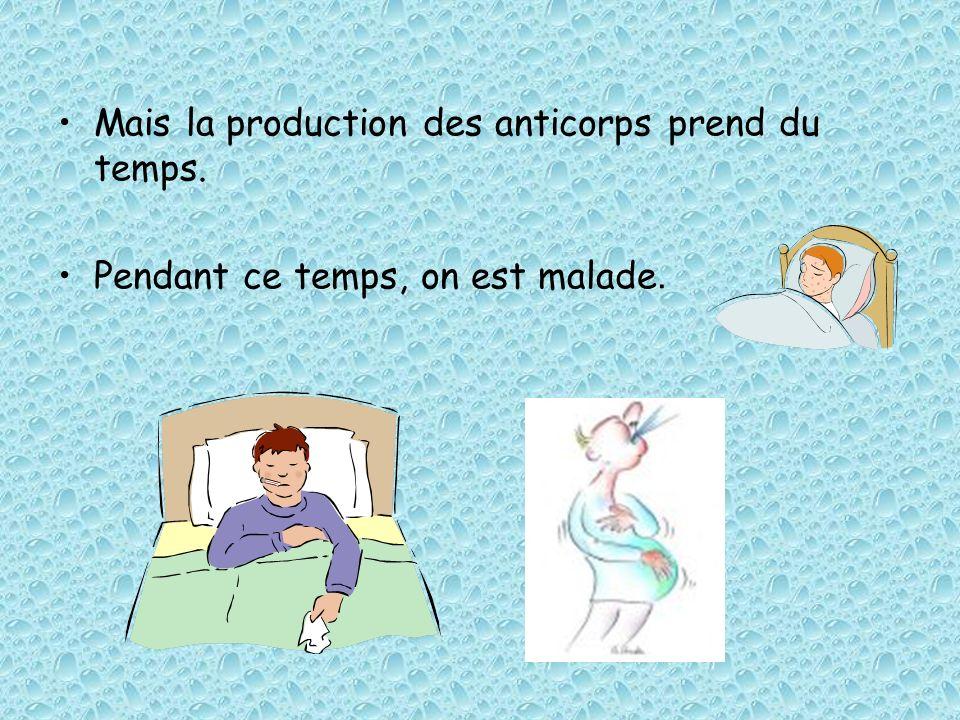 Mais la production des anticorps prend du temps. Pendant ce temps, on est malade.