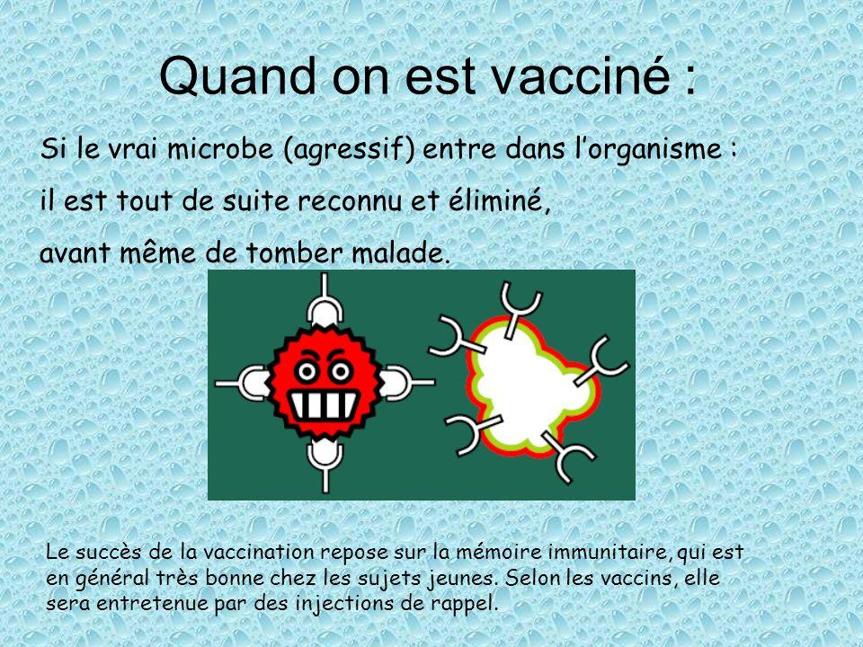 Quand on est vacciné : Si le vrai microbe (agressif) entre dans lorganisme : il est tout de suite reconnu et éliminé, avant même de tomber malade. Le