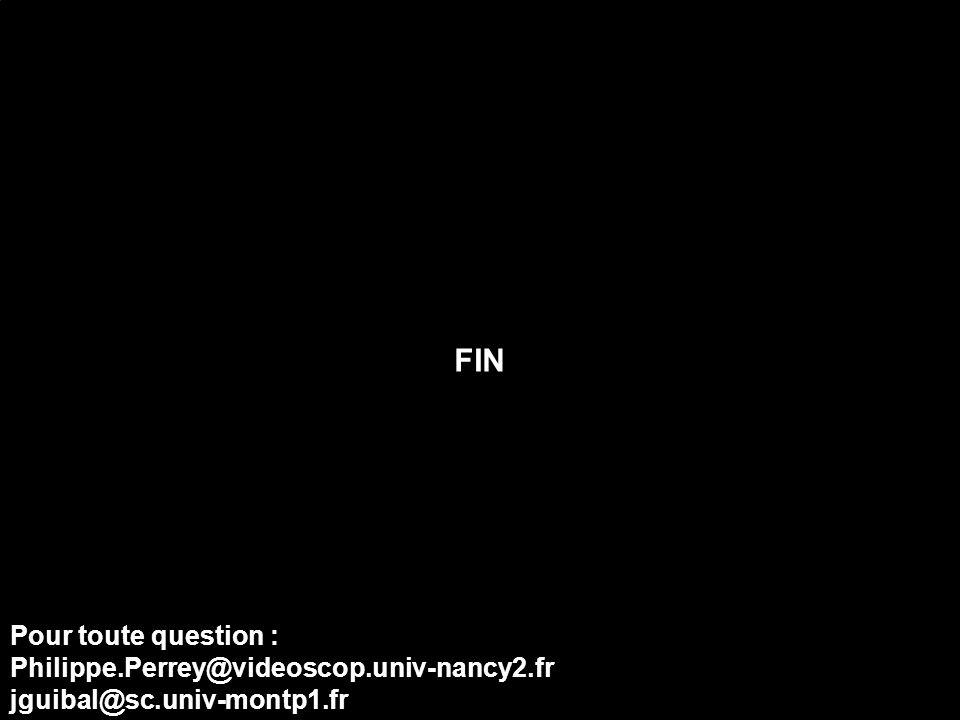 FIN Pour toute question : Philippe.Perrey@videoscop.univ-nancy2.fr jguibal@sc.univ-montp1.fr