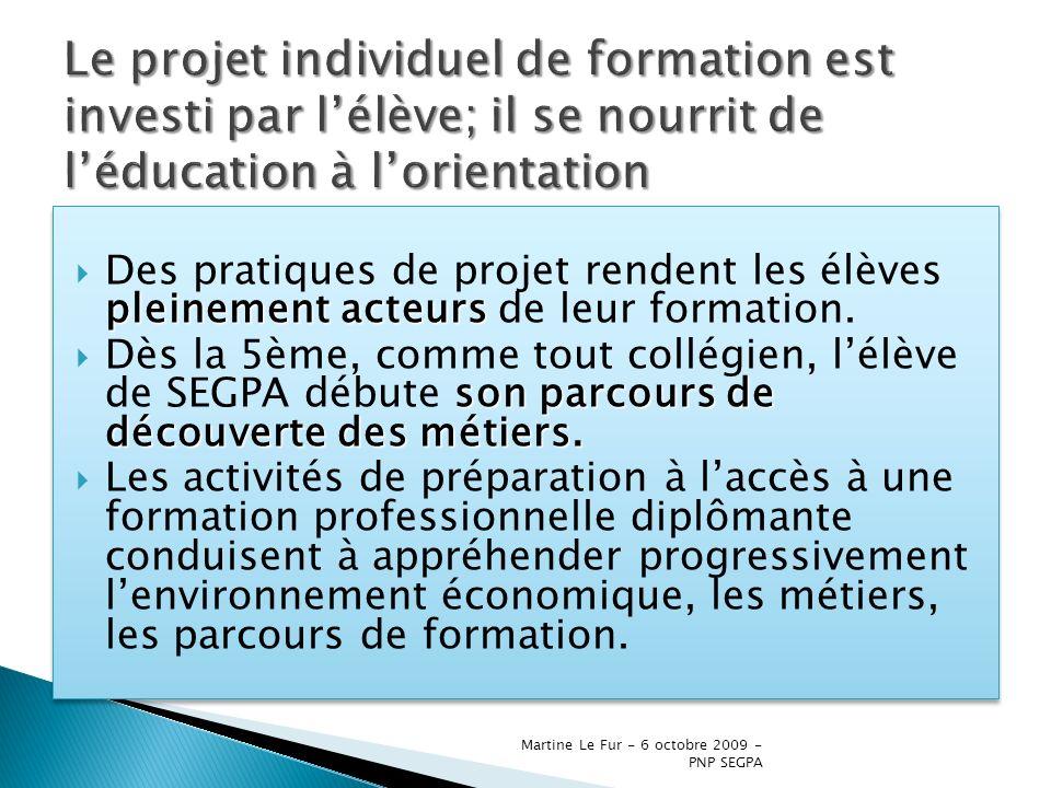 Martine Le Fur - 6 octobre 2009 - PNP SEGPA pleinement acteurs Des pratiques de projet rendent les élèves pleinement acteurs de leur formation. son pa