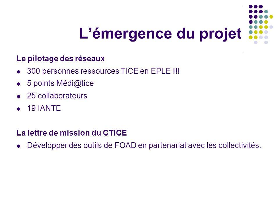 Lémergence du projet Le pilotage des réseaux 300 personnes ressources TICE en EPLE !!! 5 points Médi@tice 25 collaborateurs 19 IANTE La lettre de miss