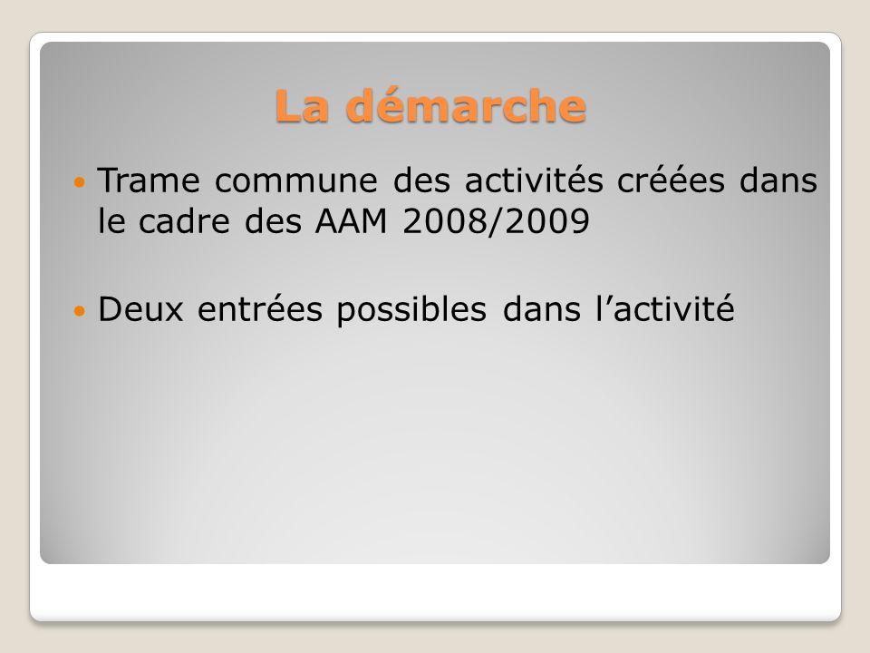 La démarche Trame commune des activités créées dans le cadre des AAM 2008/2009 Deux entrées possibles dans lactivité