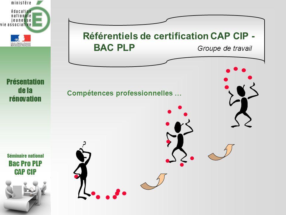 Séminaire national Bac Pro PLP CAP CIP Croisement des Tâches Compétences CAP CIP Croisement RAP / RC CAP CIP